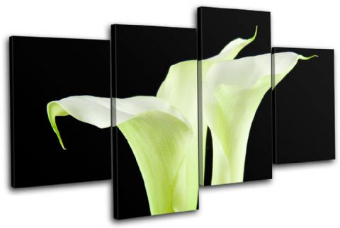 Calla Lily Flowers Floral - 13-1093(00B)-MP04-LO